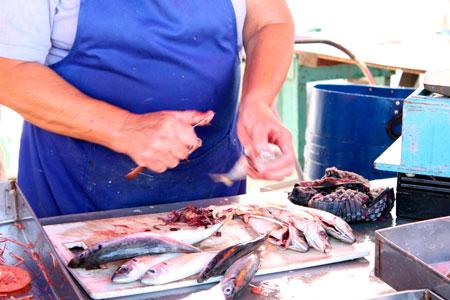 Consejos para preparar y limpiar el pescado